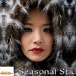 Seasonal SEO
