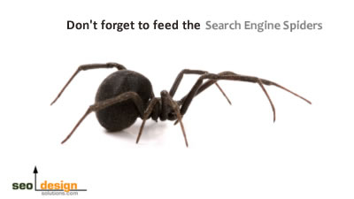 SEO Tips for Search Engine Spiders
