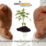 SEO Techniques to Improve Search Engine Rankings