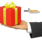 Affrordable SEO Packages or Custom SEO Services?