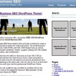 FREE WordPress SEO Theme