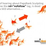 "SEO Solution for PR Scultping Provides an Alternative to the Rel=""nofollow"" Tag!"